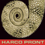 harco pront jibberish