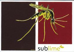 sublime 27-11-2004